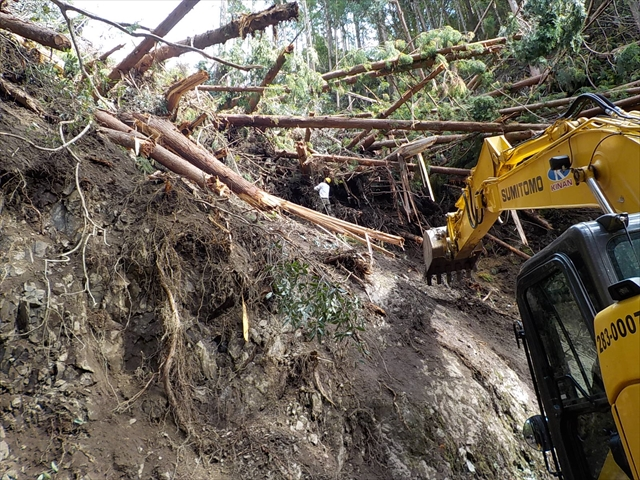 平成30年9月台風災害 R425 倒木関係